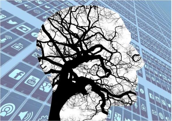 brain-social